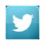 Visitaci su Twitter