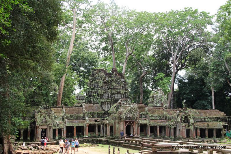 Ta Prohm - Siem Reap