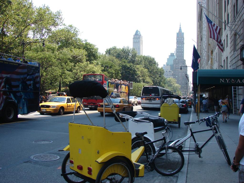 Central Park 2008-4