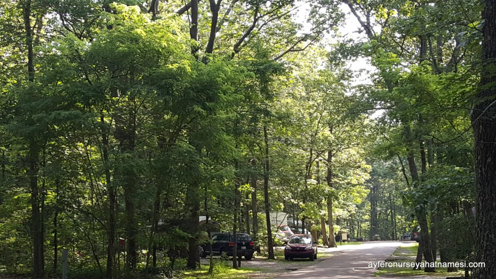 Monte Sano State Park kamp alanından... Alabama State Parks
