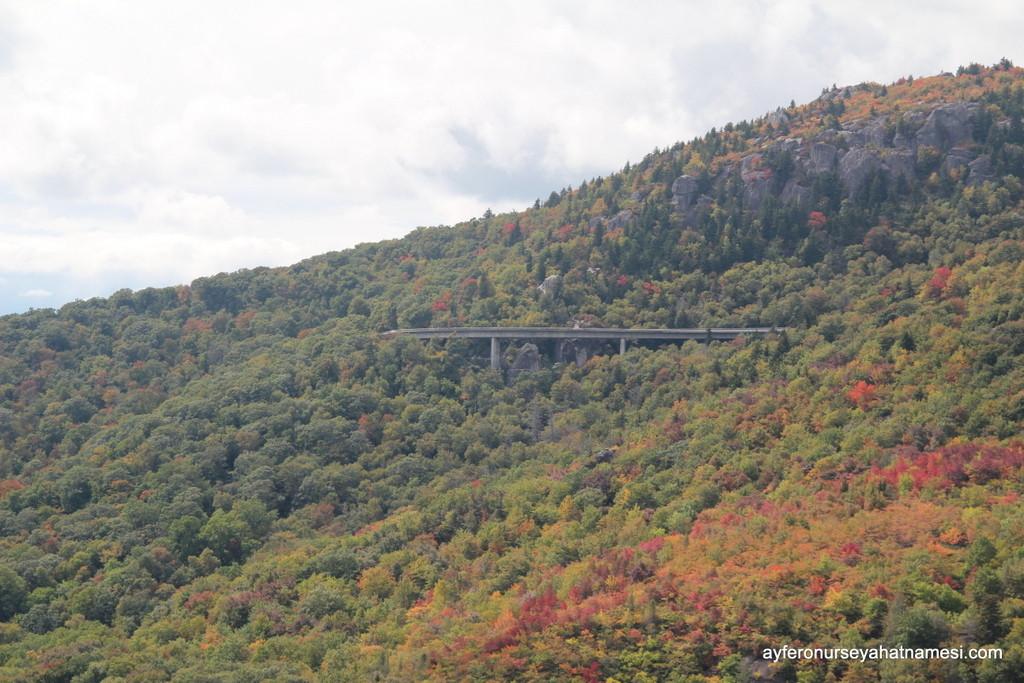 Blue ridge Parkway - 5