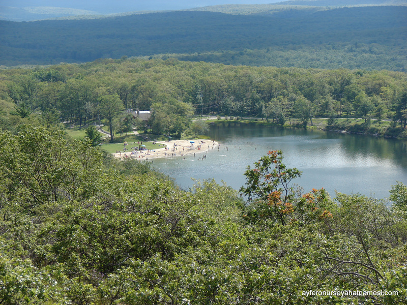 High Point State Park-001