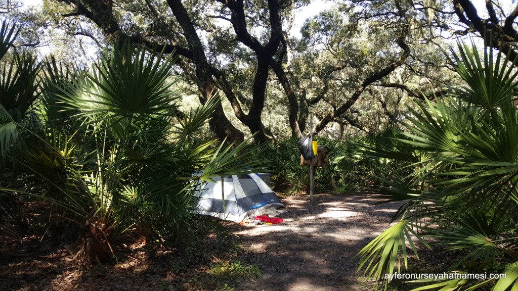 Sea Camp kamp alanı - Cumberland Adası