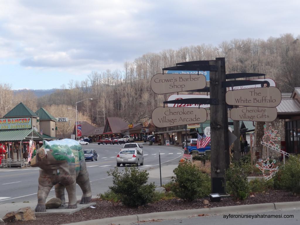 Cherokee kasabasından...