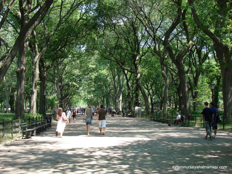 Gökdelenlerin arasındaki huzur... Central Park, NYC