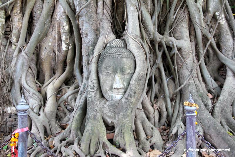 Ayutthaya-001