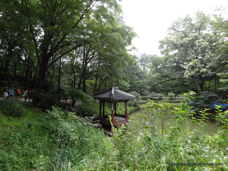 Changdeokgung Sarayı ve Gizli Bahçe