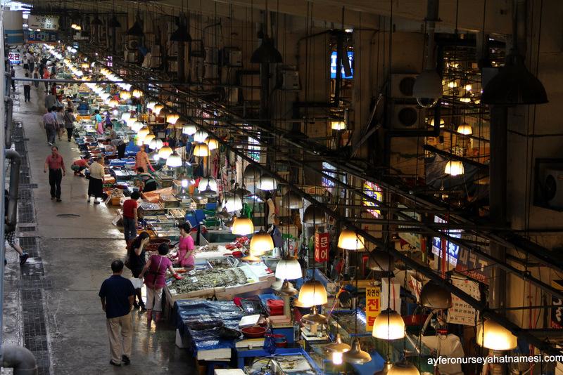Noryangjin Balık Marketinden...