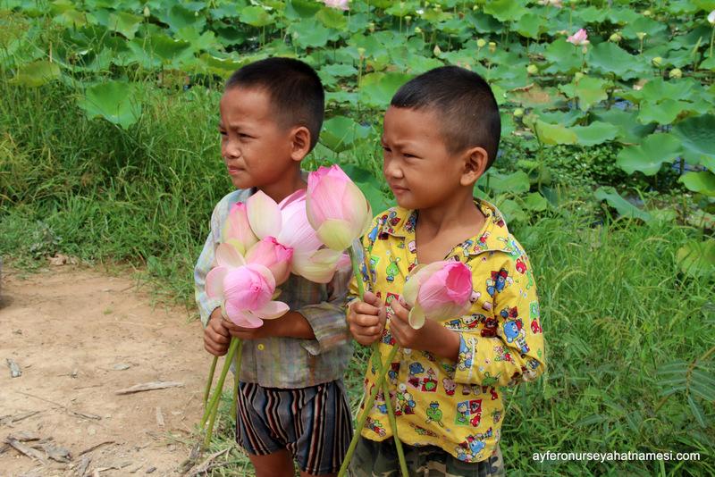 İki güzellik, Kamboçyalı çocuklar ve lotus çiçeği...
