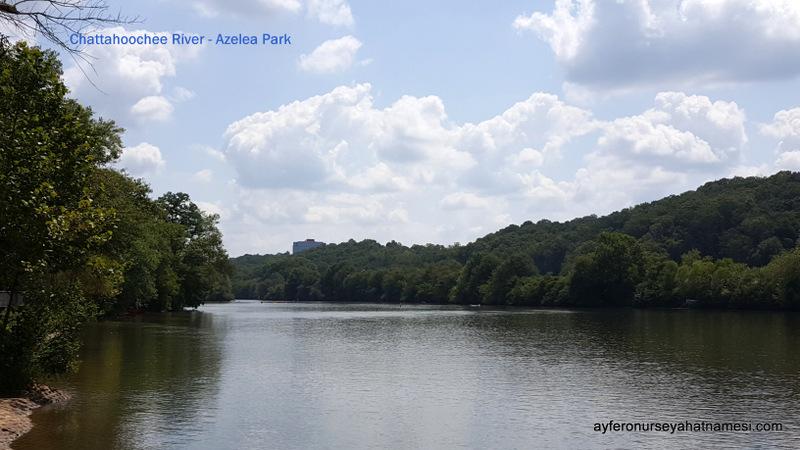 Azelea Park